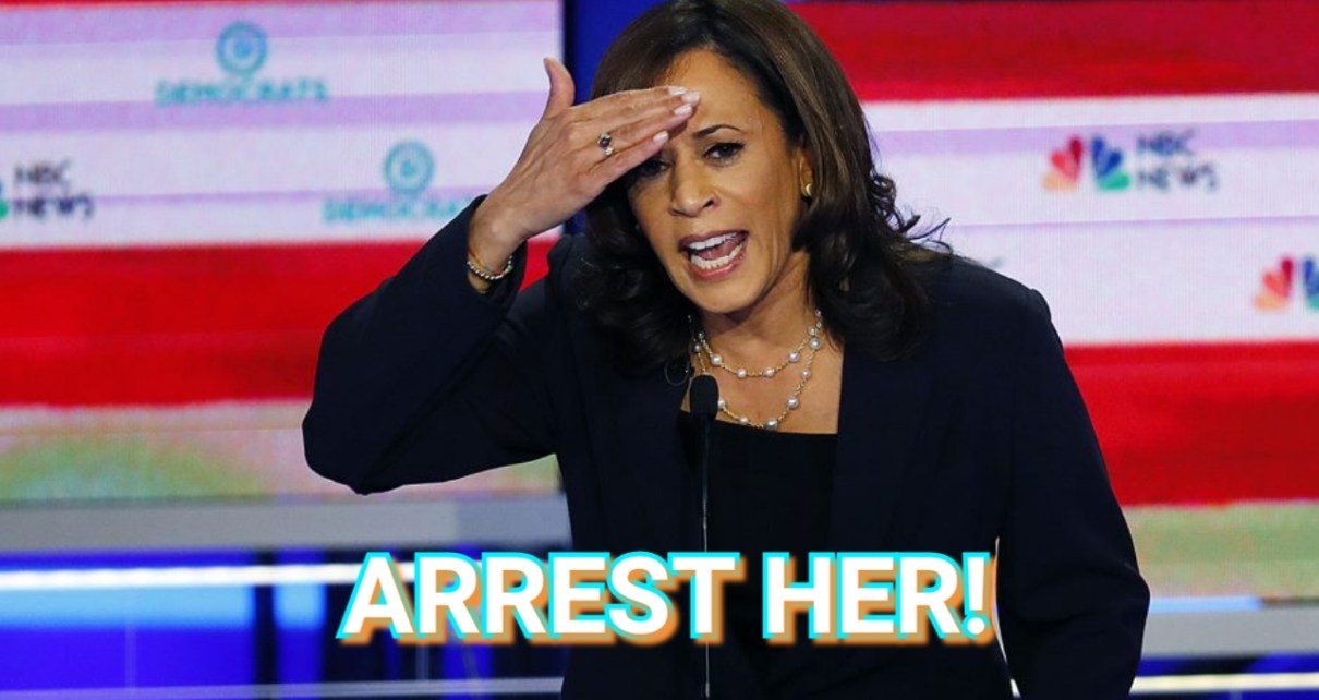Read more about the article NEW! JOIN THIS WHITE HOUSE PETITION TO DEMAND INVESTIGATION INTO KAMALA HARRIS